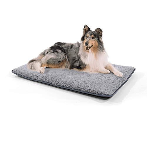 brunolie Finn mittlere Hundedecke, geruchsneutral, hygienisch und rutschfest, waschbare Hundematte in Grau, passend für die Transportbox oder das Sofa, Größe M (100 x 70 x 5 cm)