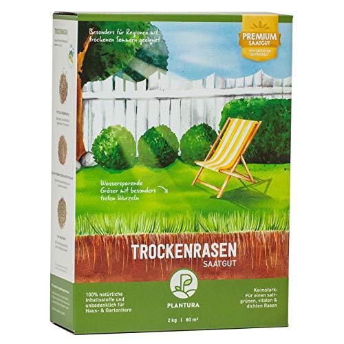 Plantura Trockenrasen, 2 kg, wassersparende Rasensamen für trockene Regionen, Premium-Saatgut