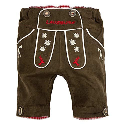 BONDI Knickerbocker, Brown 68 Tracht Baby Jungs Artikel-Nr.91136