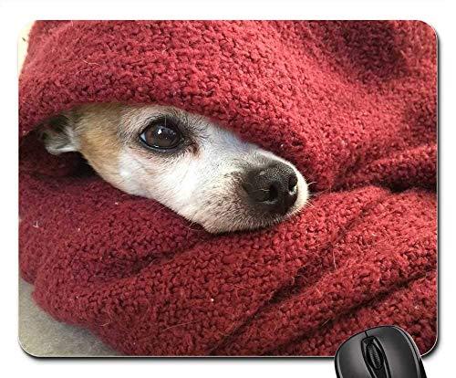 Mauspad Chihuahua Hundedecke Cold Winter Red Pet Canine Mausunterlage Anti Rutsch Gummiunterseite Ultradünner Gaming Mousepad Anti-Ausfransen Gaming Mausmatte Für Laptop/Pc, 25X30 Cm