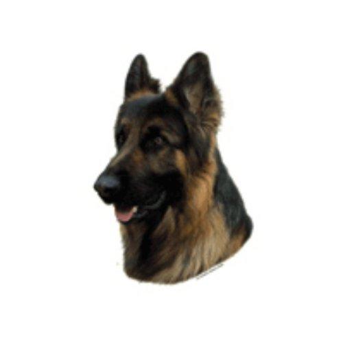 World Stickers Schwandt Heimtierbedarf 13222 Aufkleber 2 Stück ca. 140 x 160 mm für Warnschild Deutscher Schäferhund langhaar