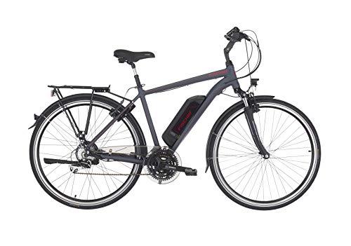 FISCHER Herren - E-Bike Trekking ETH 1806 (2019), anthrazit matt, 28