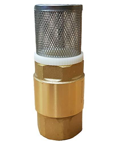 Brunnenandi 1 1/4 Zoll Fußventil mit Rückschlagventil und VA Saugkorb für Saugschlauch - Fussventil geeignet für Gartenpumpe, Schwengelpumpe, Jetpumpe - Qualitäts Ventil mit Messingklappe