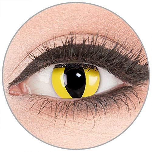 Farbige Kontaktlinsen zu Fasching Karneval Halloween - Topqualität von 'Glamlens' mit Stärke -3,50 1 Paar weiße Crazy Fun 'CatEye' Kontaktlinsen mit Behälter