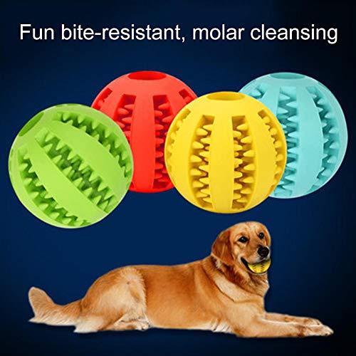 mothcattl Pet Dog Backenzähne Gummiball Elastischer, bissfester Gummiball, Training eines Wachpartners Grün