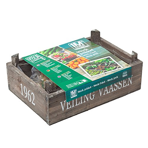 geschenkartikel-shopping square meter garten Pflanz-Set Snack Gemüse Garten Samen Saatgut Geschenkidee